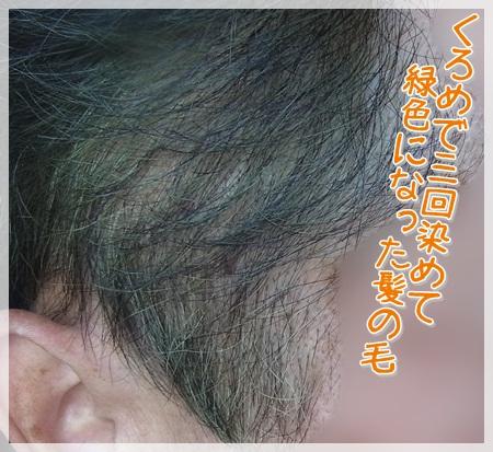 緑髪01.jpg