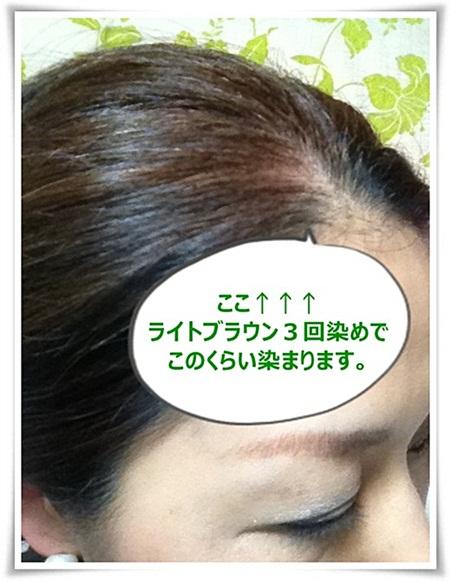 利尻02.JPG